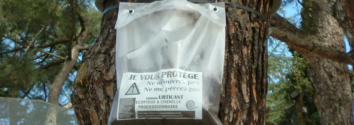 Promotion sur la formation Protection Biologique Intégrée